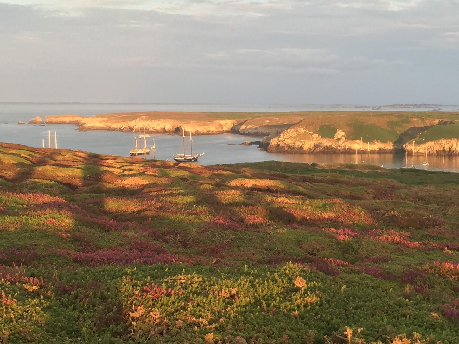 Küstenlinie ABEL TASMAN